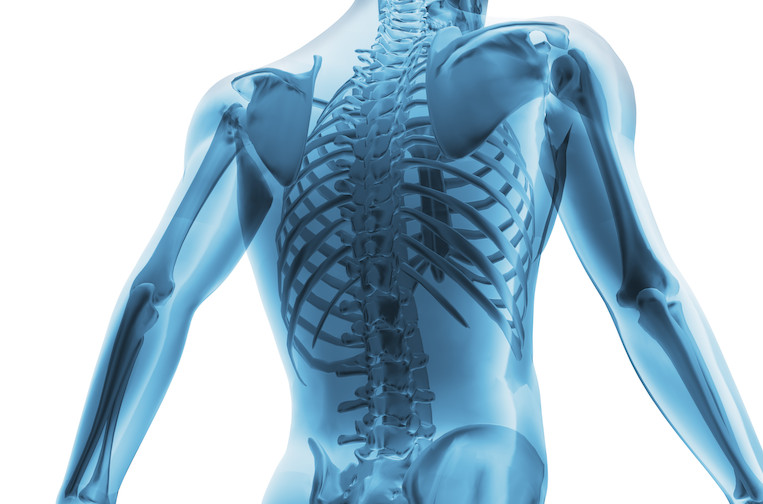 the difference between an osteopath and a chiropractor